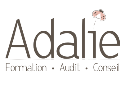 Adalie formation – animation de formations
